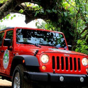 Сафари на Jeep Wrangler