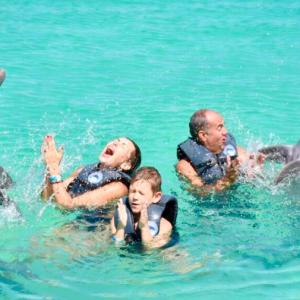 Плавание с дельфинами в океане