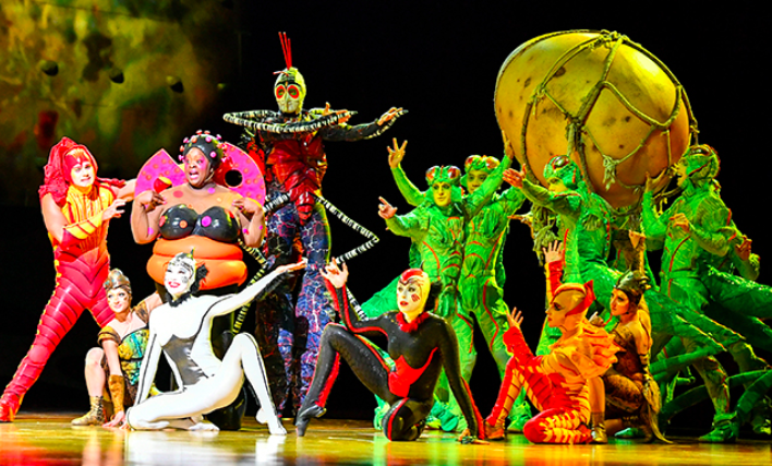 Цирк Дю Солей в Пунта Кане